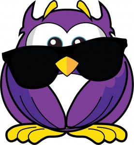 Sunglasses Owl