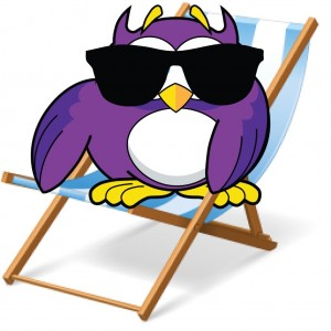 Owl Deck Chair