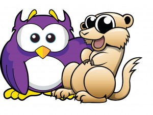 Owl Meerkat 2